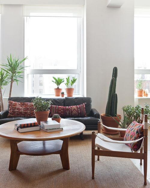 coffee table, plants, pillows