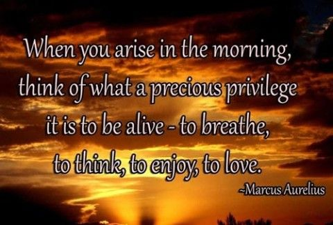52 Inspirational Good Morning Quotes with Beautiful Images