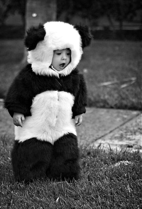 So cute - not really sure what board this  belongs on, but I'm pinning it because I love pandas!: Baby Pandas, Babies, Halloween Costumes, So Cute, Kids, Panda Costumes