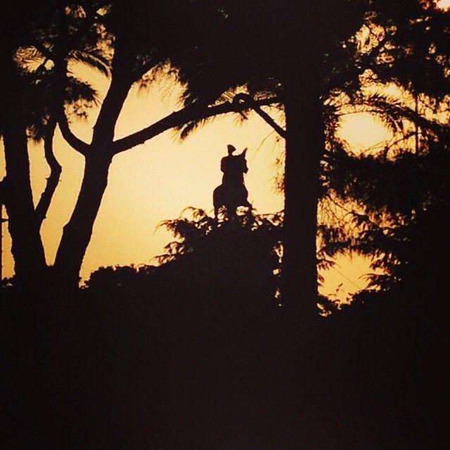 Instagram photo by @new_born_unicorn via ink361.com