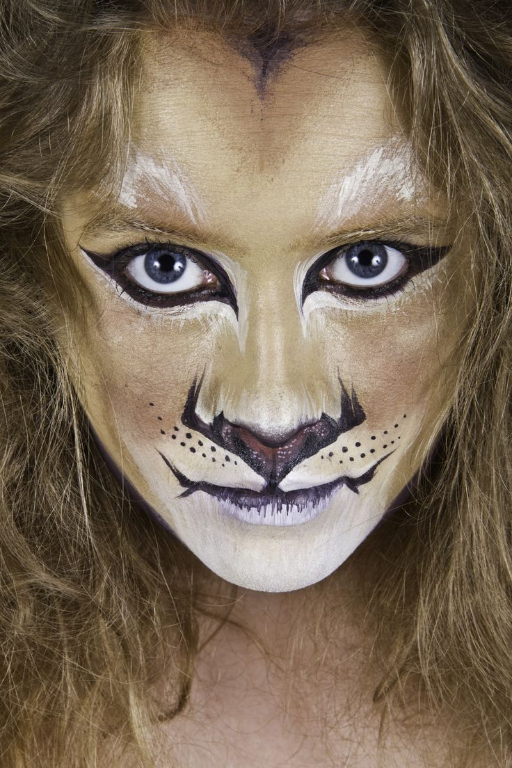 Lion Face Paint http://yourtotalentertainment.com/wp-content/uploads/2011/05/Lion.jpg