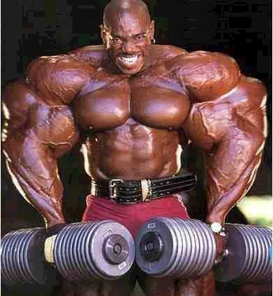 ee9a3aa108040cc19fe6f5ae7ddfe9f6  bodybuilding workouts bodybuilding supplements