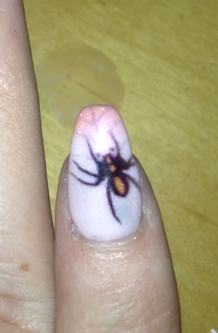 Hope your not afraid of Spiders. My iNailz printed spider for Halloween