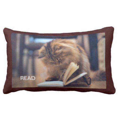 The Studious Cat Throw Pillow | Zazzle.com