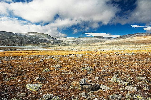 The Halti Tundra, Lapland - Finland | Flickr - Photo Sharing! Rob Orthen.
