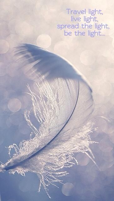 travellin light feather