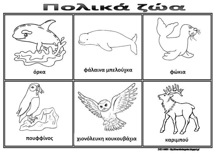 Το νέο νηπιαγωγείο που ονειρεύομαι : Ασπρόμαυρες λίστες αναφοράς για τα πολικά ζώα