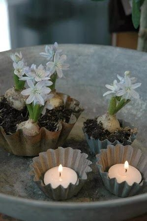 Decore winter home with bulbs