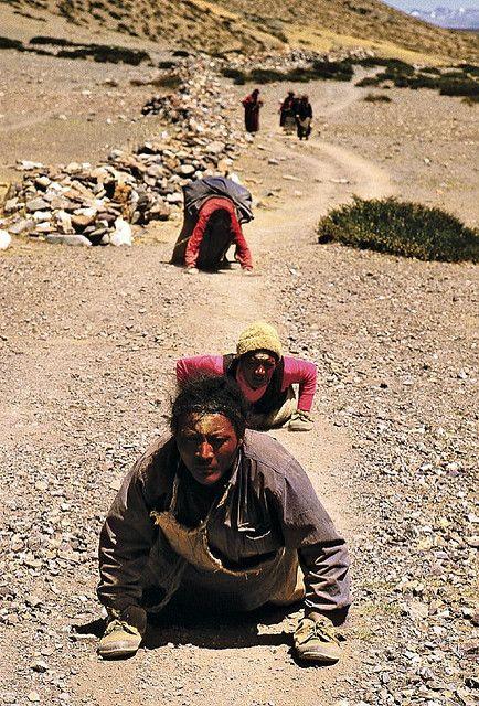 Pilgrims prostrating along the kora around Mount Kailash.