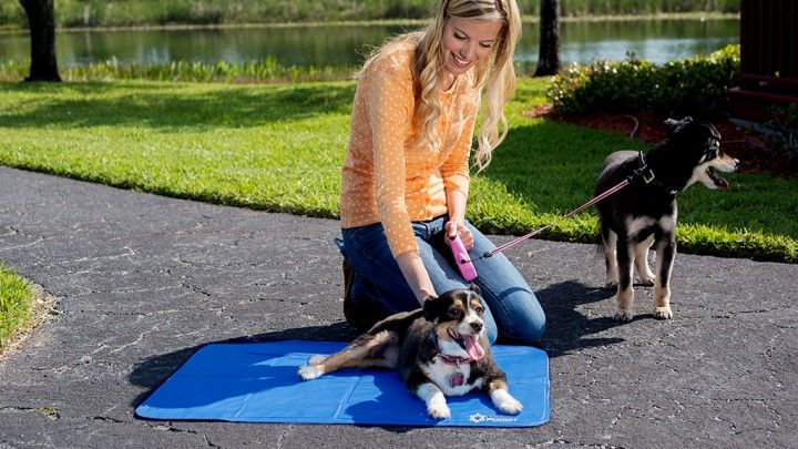 Dogs can only cool themselves through panting, which is sometimes not enough to regulate body temperature. They'll look for relief anywhere. Let them cool off quickly and relax with Polar Pooch. Just lay down the cooling mat where you'd like Fido to relax. When he lies down, the cooling gel is activated by the pressure, providing comfort for hours. After your pooch has cooled off and gets up off the mat, Polar Pooch reactivates in 15 seconds, so it can be used again and again.