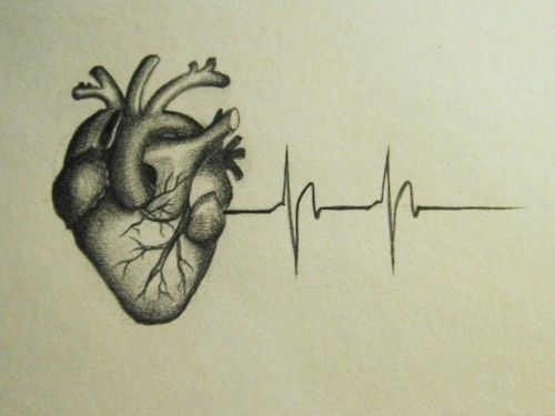 This would be weird for the anatomy of the heart but I love it