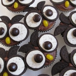 Cupcake Day for the RSPCA drew out all manner of cute edible animals around Australia