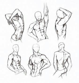 Posiert. Anatomie. Männlich