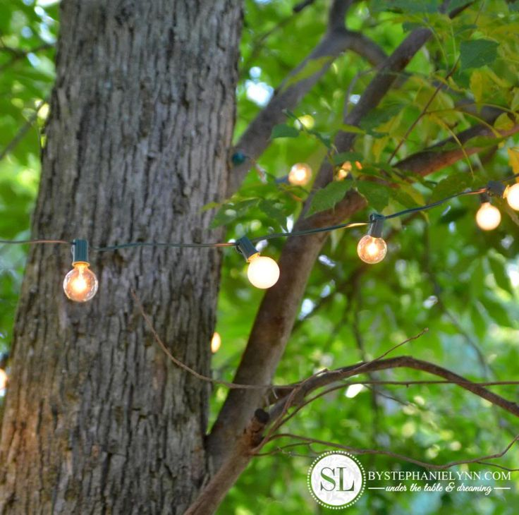 String Lights Trees Outdoors : 17 Best ideas about Lights In Trees on Pinterest Backyards, Outdoor tree lighting and Backyard ...