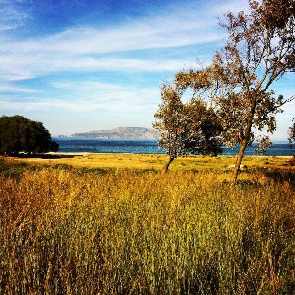 Around the bay of Agia Theodoti