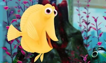 Bubbles is a Yellow Tang Fish: Finding Nemo