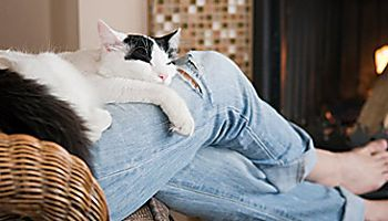Why Your Pets Seek You Out When Something's Wrong