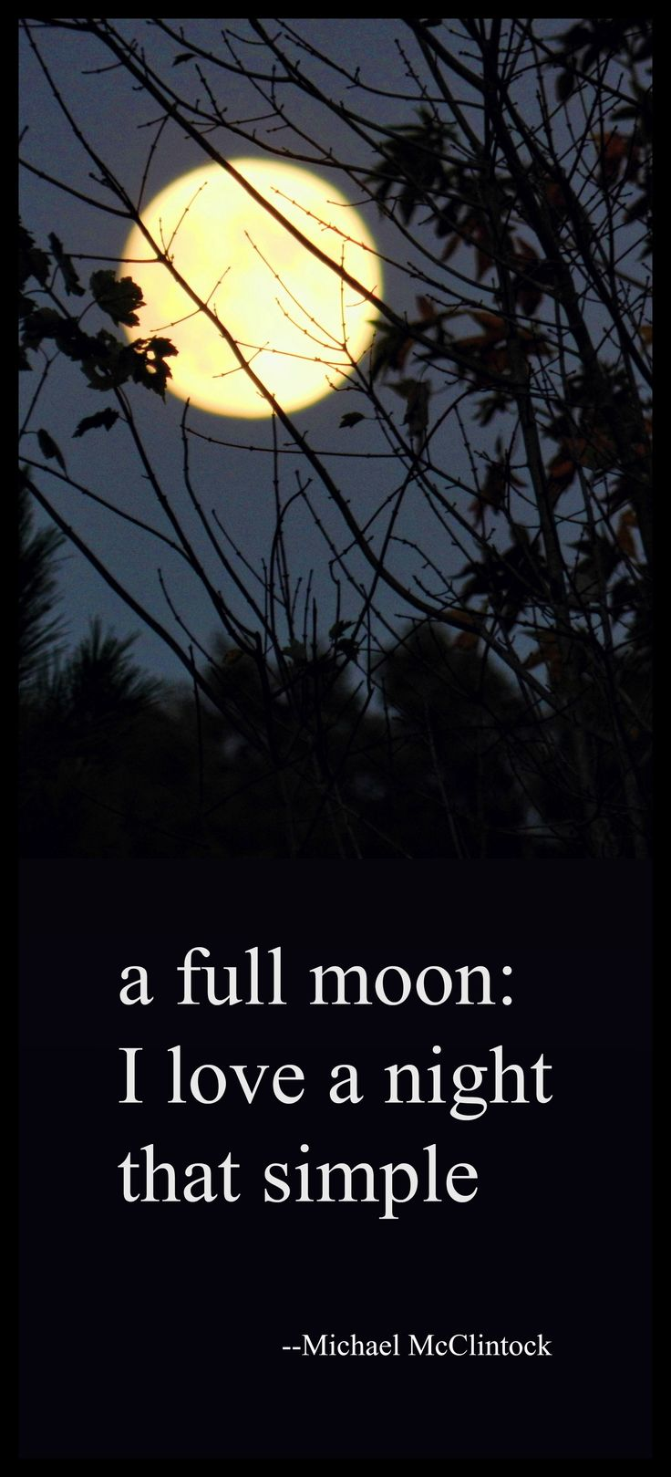 a full moon: I love a night that simple ༺♡༻ Haiku Poem by Michael McClintock