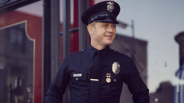 Adam-12' and 'Route 66' Star Martin Milner Dies