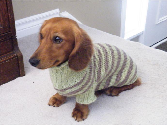 Knitting Pattern Sausage Dog : Dog Sweater Knitting Pattern Dachshund Dacshund Drool ...