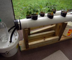 Hydroponics is a type of agriculture that uses no dirt, and usually results in larger, fuller plants. I recently became interested in the topic, and d...