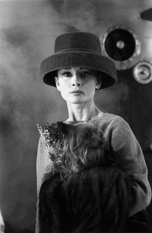 Audrey Hepburn poses with her Yorkshire Terrier, Mr. Famous, on the set of Funny Face, Paris, France, 1956