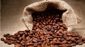 The freshest coffee is always the best coffee. Buy Coffee beans which allow you to grind your coffee freshly at Aurigin.com.au. Visit http://www.aurigin.com.au/product-ranges/coffees/coffee-beansBuy Coffee Beans Online - Aurigin