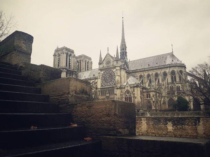 Pont de l'archevêché 2 View to #notredame ☄ @ICphotos