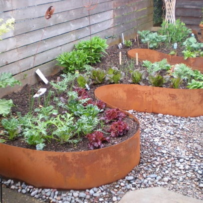 17 Best Images About Planted In The Yard On Pinterest 400 x 300