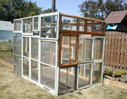 Recycled window greenhouse. Un.real. : Green Houses, Recycled Window, Budget Greenhouses, Window Greenhouses, Greenhouses Ideas, Recycled Greenhouses, Old Window, Greenhouses Gardens, Diy Greenhouses