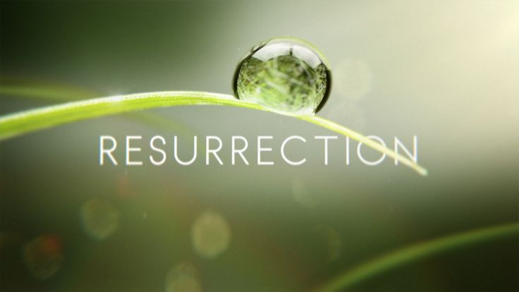 ABC TV show - Resurrection is an American fantasy drama television series about dead people who return to life. The series is based on the book The Returned by Jason Mott. Although similar in concept to Les Revenants, it is based on a different source, and Resurrection has no connection to the French movie or TV series