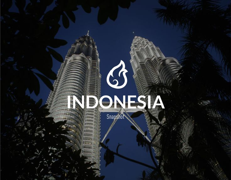 #Indonesia #snapshot #energy #oil #economy #resources #demographics #gas http://www.abo.net/it_IT/info_interattiva/indonesia-snapshot/indonesia-snapshot-eng.html