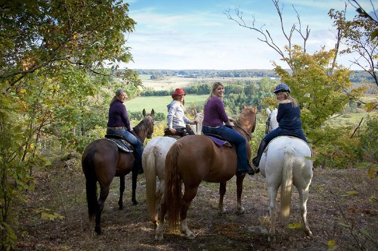 Muskoka Horseback Riding, Beginner Lessons, Boarding...Maple Valley Ranch, 705-646-3759, Bracebridge Ontario