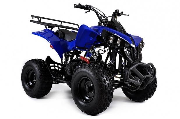 ATV, 125 cc, Renegade, som vi kör på landet. Det är en Kinamaskin så jag måste meka med den ofta. Annars lossnar skruvarna. Nu gillar jag att meka så det är inga problem med den saken. Den gör 60 knyck ungefär.