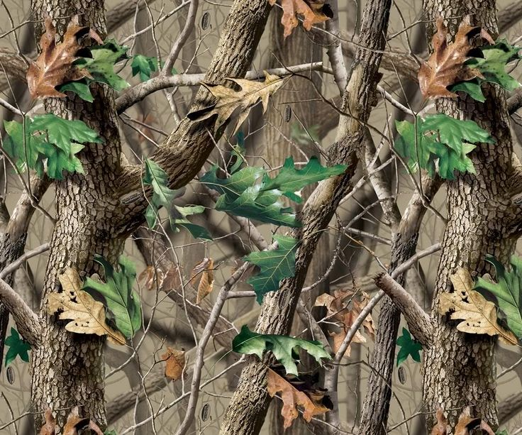 17 Best Ideas About Realtree Wallpaper On Pinterest