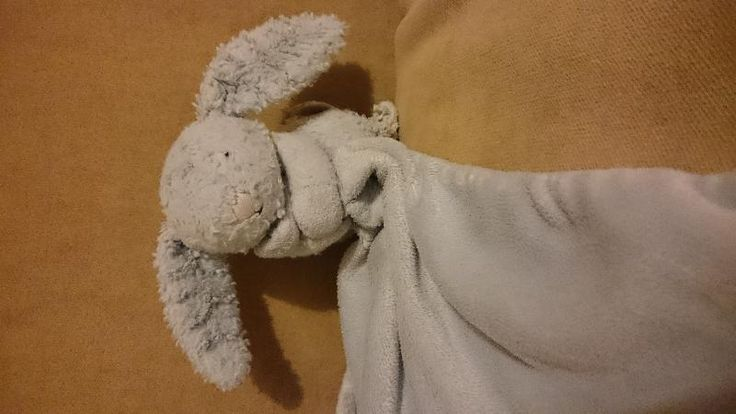 Lost on 26 Mar. 2016 @ Ottawa, Canada . My son has lost his blue jellycat bunny with blanket. His name Leo is embroidered on it. Realised it was missing after retuning from holiday in Ottawa and mont tremblant in Canada. Visit: https://whiteboomerang.com/lostteddy/msg/4pwlu2 (Posted by Sarah on 03 Apr. 2016)