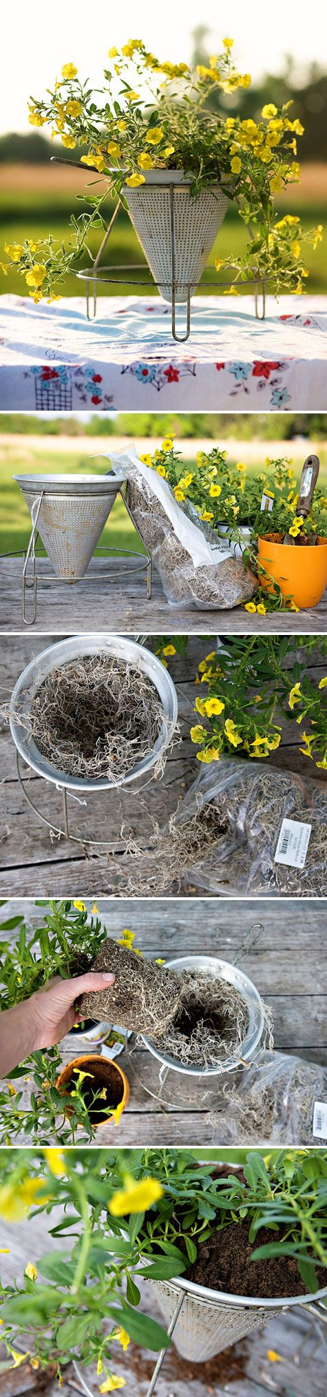 DIY PLANTERS :: Food Mill Planter Tutorial | #designsponge #foodmill #diyplanter