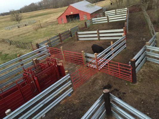 Premier one goat fence