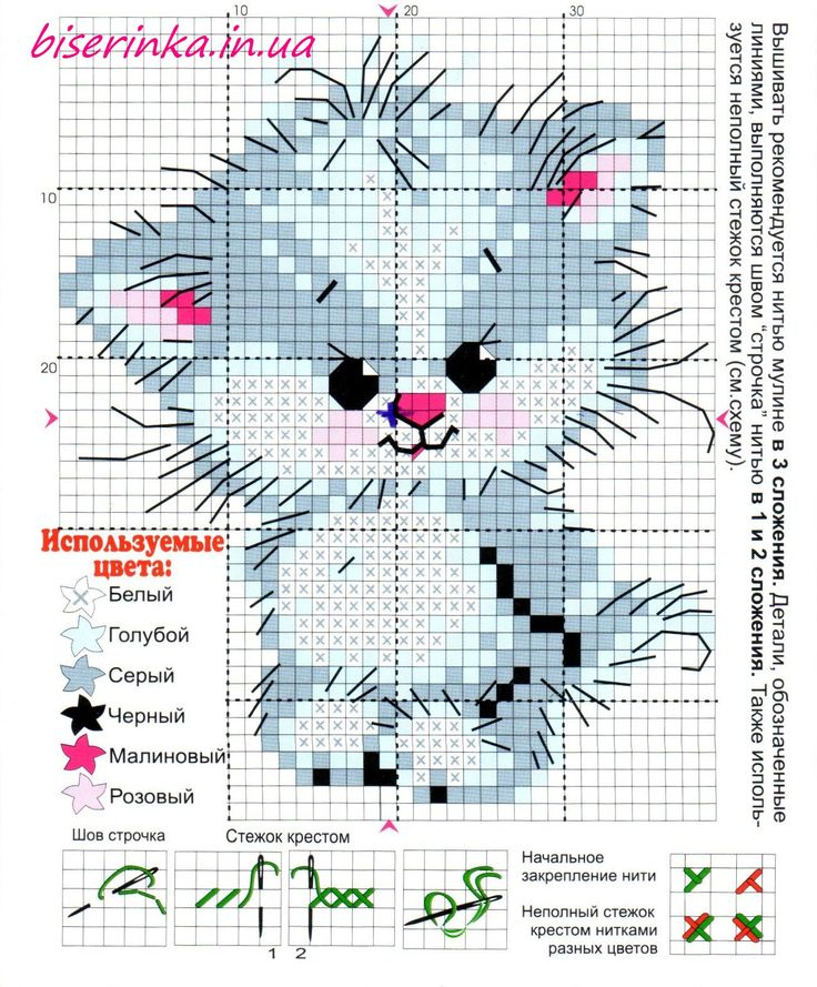 Kitten cross stitch: