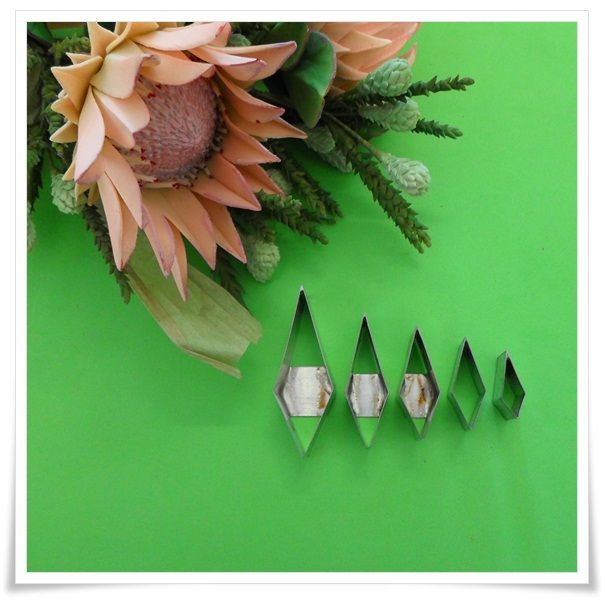 #King#Protea#flower#Cutters