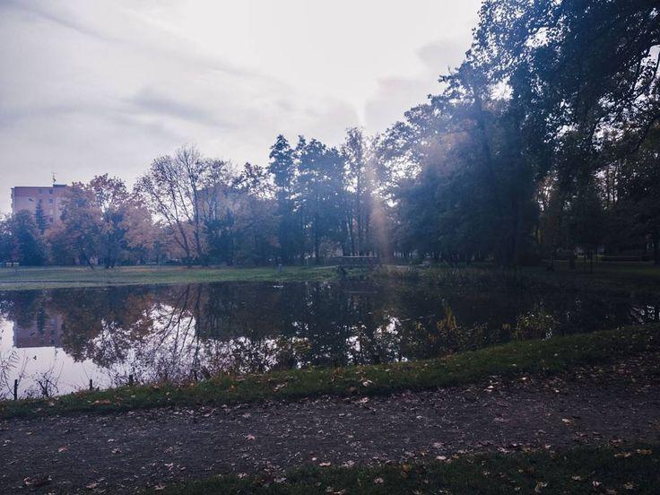 #pond #park #walk #october #autumn #lightroom #shotononeplus3 #travel #outdoors #nature #day