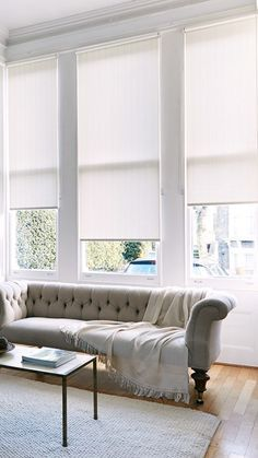 Light Grey Roller Blinds in Library