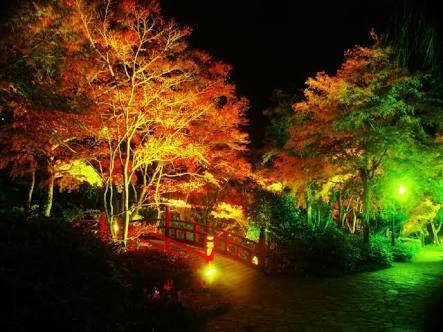 「湯河原万葉公園」の画像検索結果