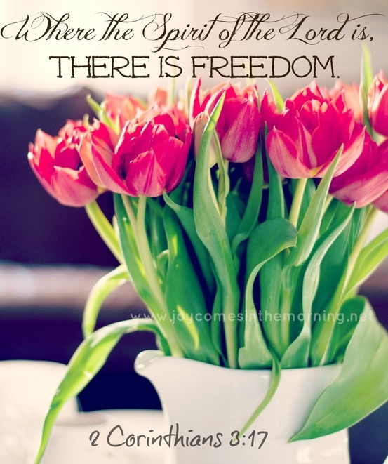 220 best 2 corinthians images on pinterest - Flowers that mean freedom ...
