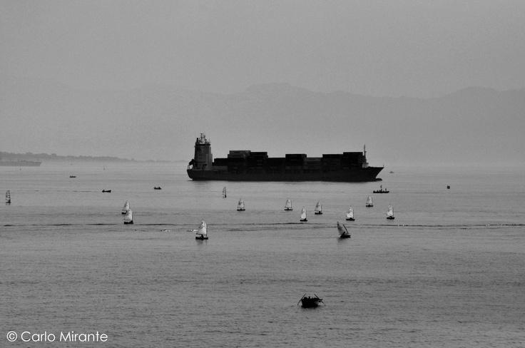 Golfo di Napoli; Paperini con Chioccia..   Golf of Naples (Italy)