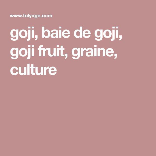 goji, baie de goji, goji fruit, graine, culture