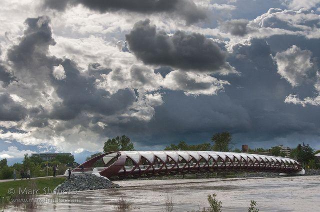 Calgary Flood 2013 - Peace Bridge | Flickr - Photo Sharing!
