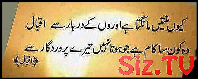 Urdu Quotes In English Images About Life For Faceb #Education #education_quotes_…