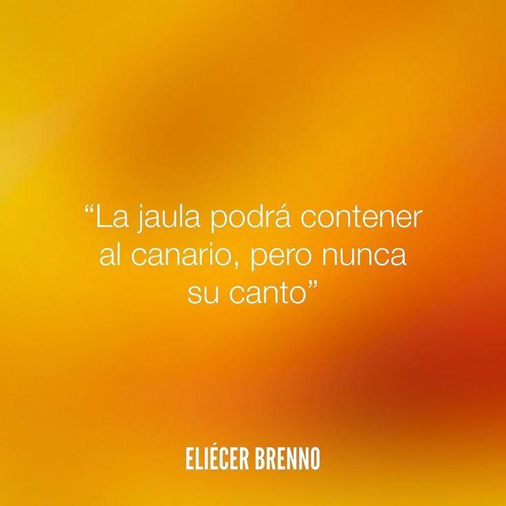 La jaula podrá contener al canario pero nunca su canto Eliécer Brenno Gracias @volantazos por darme voz. La Causa http://ift.tt/2ggOU9J #jaula #quotes #writers #escritores #EliecerBrenno #reading #textos #instafrases #instaquotes #panama #poemas #poesias #pensamientos #autores #argentina #frases #frasedeldia #CulturaColectiva #letrasdeautores #chile #versos #barcelona #madrid #mexico #microcuentos #nochedepoemas #megustaleer #accionpoetica #colombia #venezuela