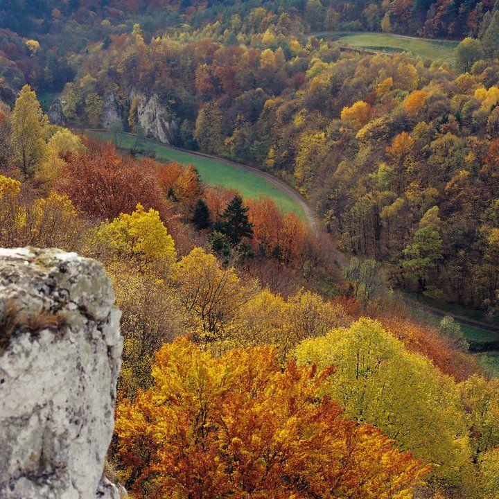 Jesień w Polsce - najpiękniejsze miejsca,Ojcowski Park Narodowy.